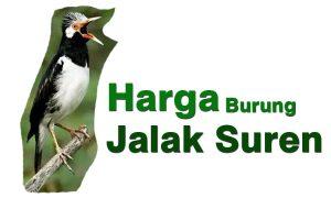 Harga Burung Jalak Suren Terbaru